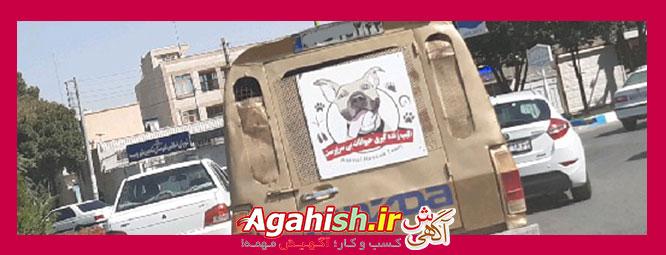 زنده گیری سگ شاهین شهر